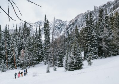 Movement Skiing Outdoor Sports Photography 15