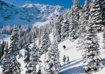 Movement Skiing Outdoor Sports Photography 16
