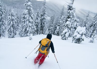 Movement Skiing Outdoor Sports Photography 3