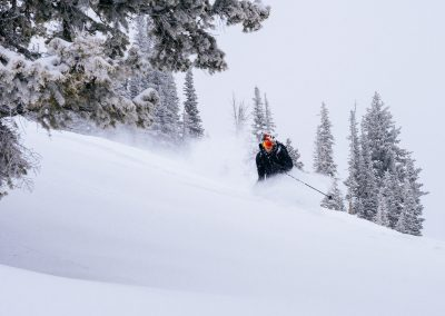 Movement Skiing Outdoor Sports Photography 4