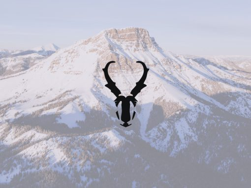 Pronghorn Advisors